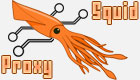 Logo-Squid Proxy